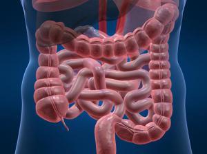 Средства от запоров: 9 рецептов для улучшения перистальтики кишечника
