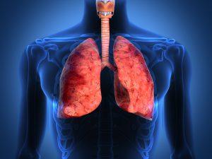 Ученые нашли ген, который позволит уменьшить признаки фиброза легких