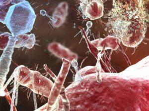 Обрезание защитит от опасных вирусов