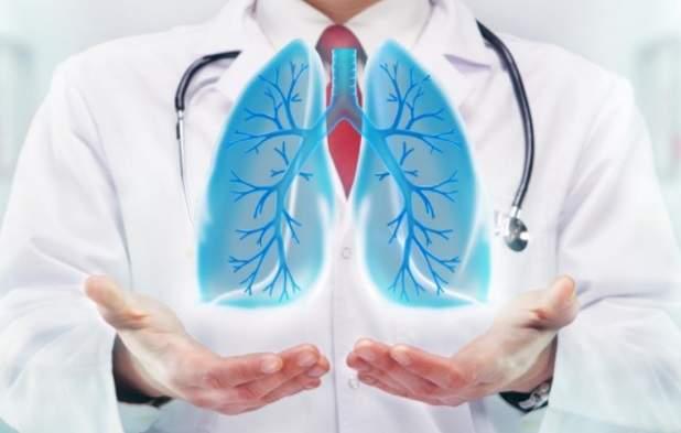 Названы семь трав для профилактики заболеваний легких