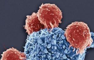 Ученые создали антитела, способные побороть ВИЧ