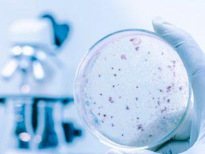 Хорошо забытое старое: отечественное лекарство справится с туберкулезом