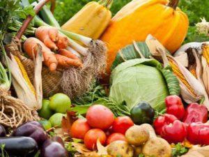 Врачи назвали самые полезные для иммунитета продукты