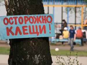 Клещи-2018 в Новосибирске: прививки, страхование, цены