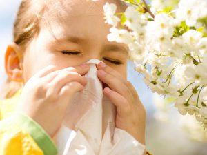 Пик весеннего сезона аллергии в России придётся на майские праздники