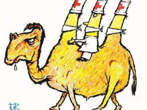 «Верблюжий грипп» в Азии и Африке: вполне реальная угроза