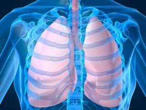 Туберкулез легких: принципы лечение народными средствами