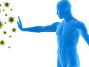 Какие продукты лучше всего поддерживают иммунную систему