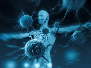 Вирус может быть полезным для иммунитета