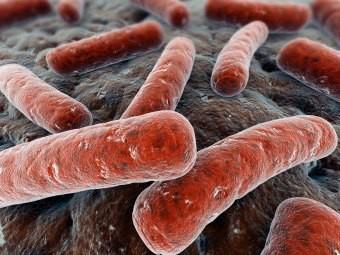 Распространенность детского туберкулеза в мире недооценивали на 25 процентов