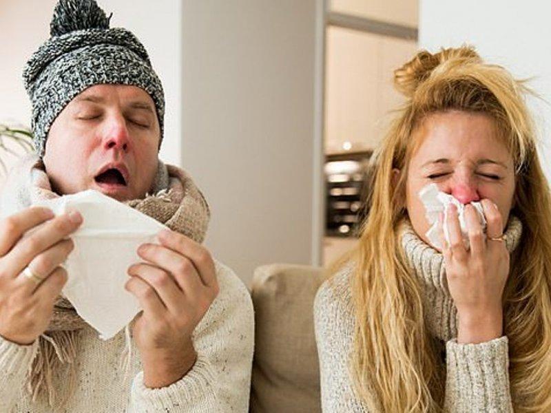 Простуду все-таки собираются победить