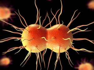 Возраст риска: кто больше заражается коронавирусом