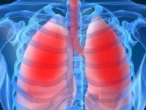 Медики определили продукты, полезные для легких