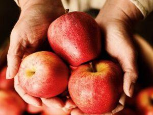 6 лучших продуктов для укрепления легких в сезон опасных инфекций