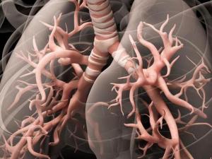 Гипервентиляция: как мы губим свое здоровье дыханием