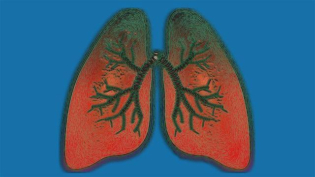 Названа важнейшая причина хронической болезни легких у некурящих