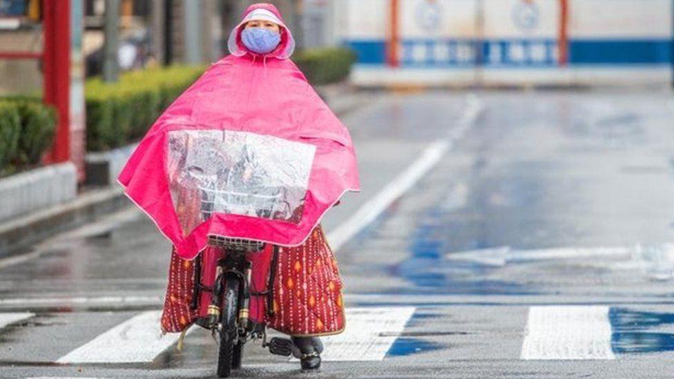 Жара и влажность влияют на стабильность коронавируса — исследование