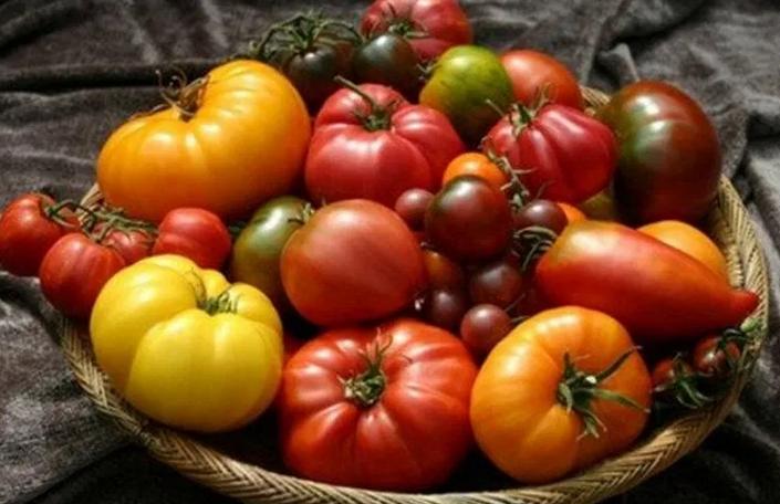 Восстанавливают легкие и защищают глаза: названы целебные свойства томатов