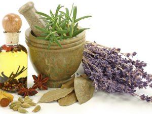 Сборы трав, которые помогут при гепатитах и циррозах печени