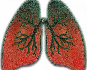 Лечение астмы должно выполняться с учетом генетики