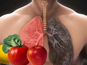 5 дешевых продуктов для очищения и оздоровления легких