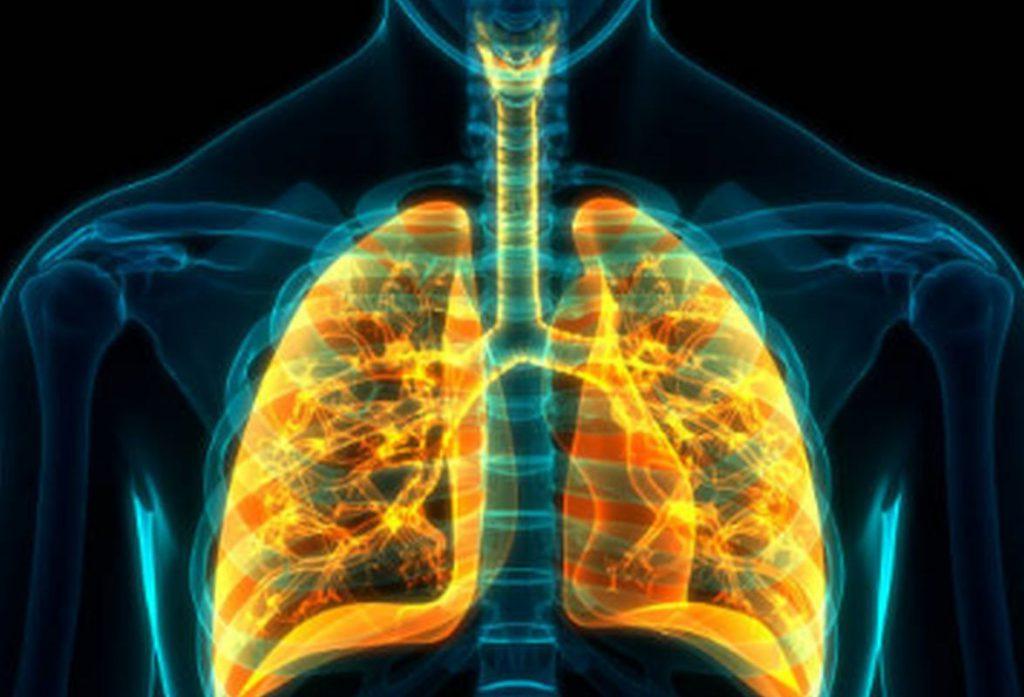 Названы пять сильнодействующих продуктов для улучшения здоровья легких