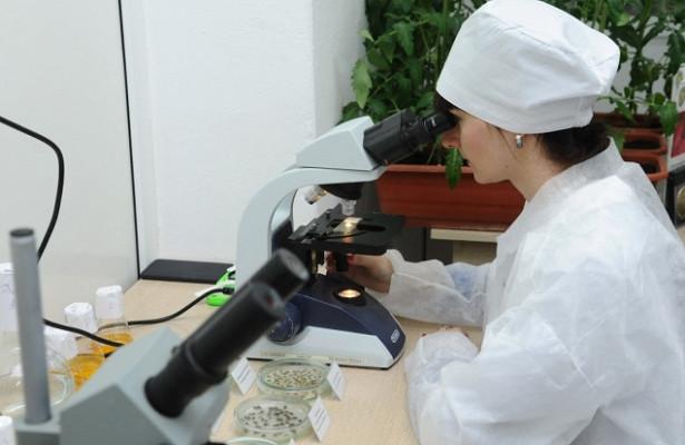 Ученые создали вакцину, способную защитить от всех штаммов коронавируса