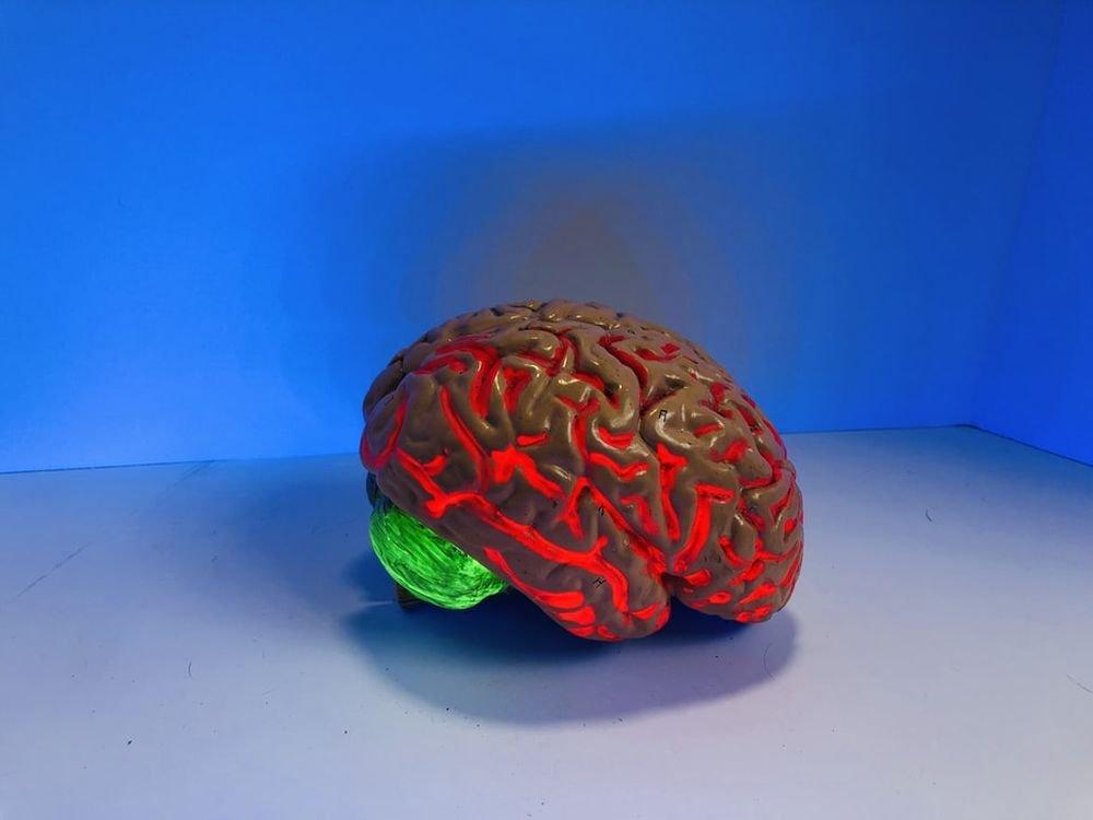 Коронавирус может повреждать мозг надолго