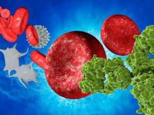 Постковидный синдром могут вызывать «ложные» антитела