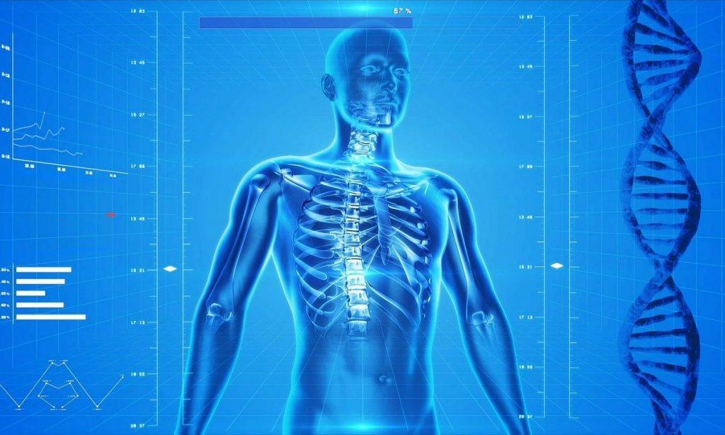 Стало известно, когда проходят повреждения организма после covid-19